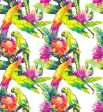 Yellow parrots and exotic flowers Stock Image