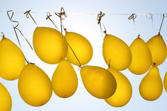 Yellow party balloon floating in mid air Stock Photography