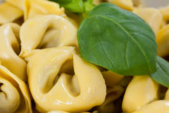 Yellow pasta with herbs. Close-up of yellow pasta with herbs Stock Photos