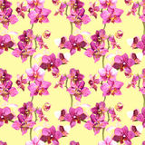 Yellow pattern with floral design in orchids flowers Stock Photo