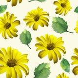 Yellow patterns Stock Photo