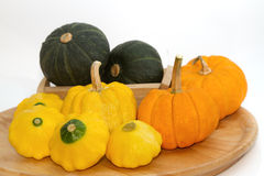 Yellow Patty Pan And Pumpkin Royalty Free Stock Photo