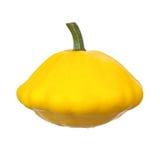 Yellow pattypan Stock Image