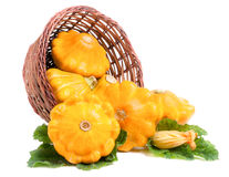 Yellow pattypan squash with leaf and flower in a wicker basket isolated on white background Royalty Free Stock Image