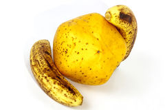 Yellow Paw Paw with Two Ripe Speckled Bananas Stock Image