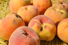 Yellow peach harvest Royalty Free Stock Photo