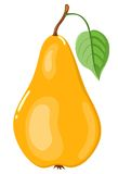 The yellow pear. Isolated on white. Vector illustration Royalty Free Stock Image