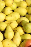 Yellow pear Royalty Free Stock Photos