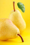 Yellow pear fruits with green pear leaf on yellow background Stock Images