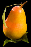 Yellow pear with leaf Royalty Free Stock Image