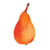 Yellow pear Stock Photography