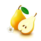 Yellow pear on white background Stock Images