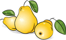 Yellow pears Stock Images