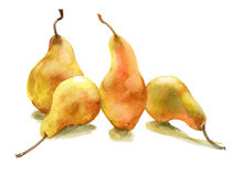 Yellow pears. Beautiful, ripe yellow pears on a white background Stock Images