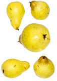 Yellow pears Royalty Free Stock Photography