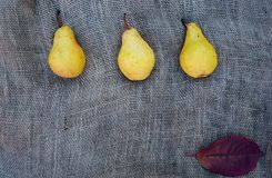 Yellow Pears. Fresh yellow pears and dry leaf on rustic linen background Royalty Free Stock Image