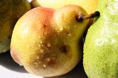 Yellow pears Stock Image