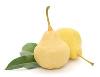 Yellow pears with green leafs Royalty Free Stock Photo