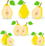 Yellow pears  illustration Royalty Free Stock Photography