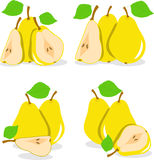 Yellow pears  illustration Royalty Free Stock Image