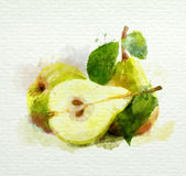 Yellow pears with leaves on a white background. Watercolor painting Stock Photo