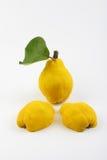 Yellow pears Royalty Free Stock Photo