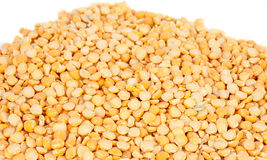 Yellow peas isolated royalty free stock image
