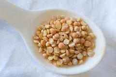 Yellow peas on a white spoon. Photo Yellow peas on a white spoon closeup Royalty Free Stock Photography