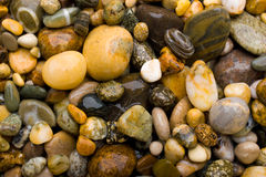 Yellow pebbles. Background made of yellow pebbles Stock Photos