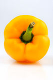 Yellow capsicum. Front view of a yellow capsicum isolated on the white background royalty free stock photography