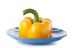 Yellow pepper on a blue plate Royalty Free Stock Image