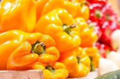 Yellow pepper capsicum Stock Photo