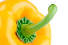 Yellow pepper close-up Royalty Free Stock Photos