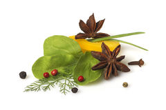 Yellow pepper, herbs and spices Stock Images