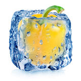Yellow pepper in ice cube Stock Image
