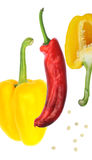 Yellow Pepper Red Pepper Royalty Free Stock Photography