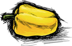 Yellow pepper. Sketch vector illustration of yellow pepper Stock Image