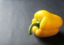 Yellow pepper with water drops on a grey background Stock Image