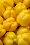 Yellow Peppers. Close up view of yellow bell peppers Royalty Free Stock Photo