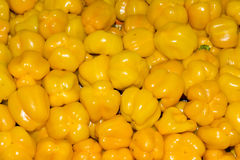 Yellow peppers Stock Photos