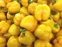 Yellow peppers background Royalty Free Stock Images