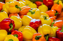 Yellow peppers, green and red. On a farmers market Royalty Free Stock Image