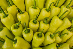 Yellow peppers Stock Images