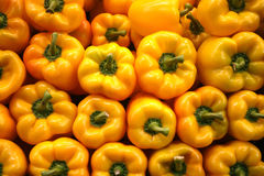 Yellow Peppers Stock Image