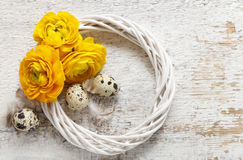 Yellow persian buttercup flowers (ranunculus) on wooden background. royalty free stock images