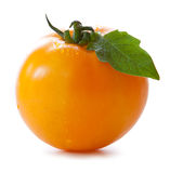 Yellow  persimmon tomato. Royalty Free Stock Photography