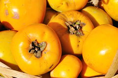Yellow persimmons Royalty Free Stock Photos