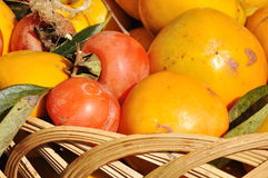 Yellow persimmons Stock Image