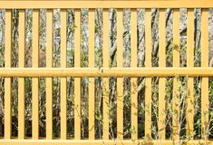 Yellow picket fence. royalty free stock photo