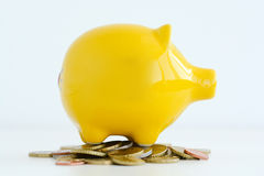 Yellow piggy bank isolated suggesting family savings concept Stock Photo